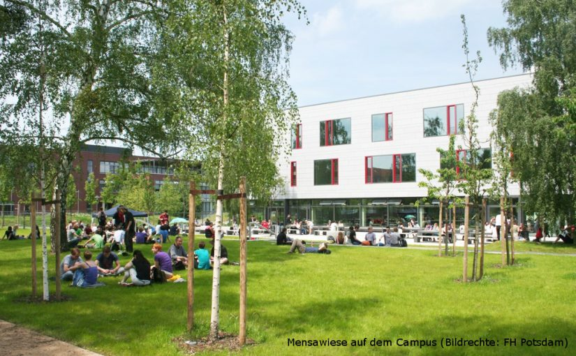 Mensawiese auf dem Campus (Bildrechte: FH Potsdam)